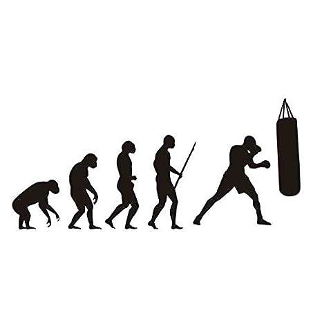 Evolución del boxeo Pegatina Kick Boxer Play Car Decal ...