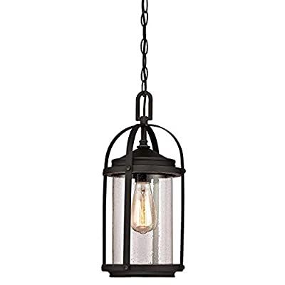 Westinghouse 6339300 Grandview One-Light Outdoor Wall Fixture, Oil Rubbed Bronze Finish with Highlights and Clear Seeded Glass (Renewed)