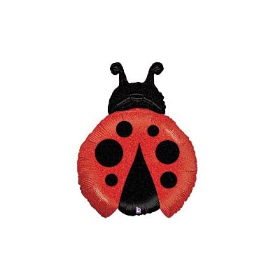 LADYBUG 1st First BIRTHDAY PARTY Balloons Decorations Supplies NEW: Toys & Games