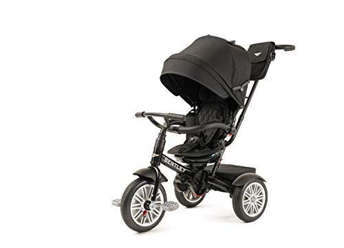 Bentley Toddler Stroller/Trike