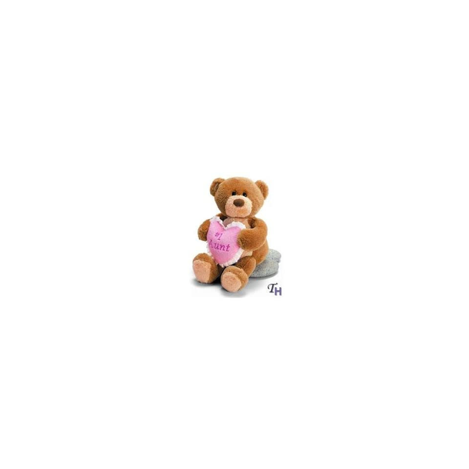 Extra Special Aunt Teddy Bear with Pink Heart Message Pillow 7 inch