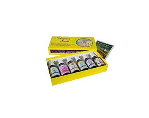 FLOWER ESSENCE SERVICES Seasons of the Soul Gift Set 2oz 6 PC