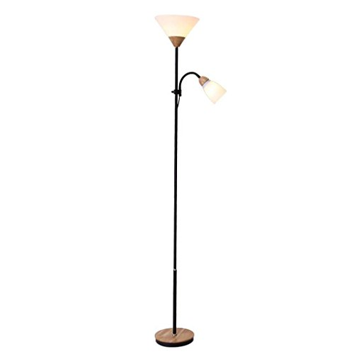Shade Acrylic Floor Lamp (GAOXINGSHOP GX Floor lamp Bedside Floor Lighting Fixtures, Paint Iron Art Lamp Body, Acrylic Lampshade, Living Room Decoration Reading Lamp)