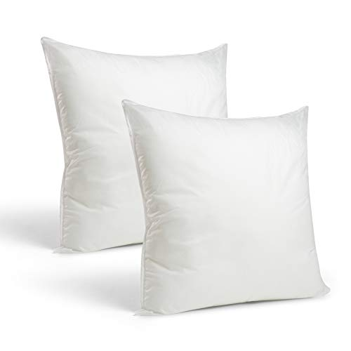 Set of 2-22 x 22 Premium Hypoallergenic Stuffer Pillow Inserts Sham Square Form Polyester, Standard/White - Made in USA