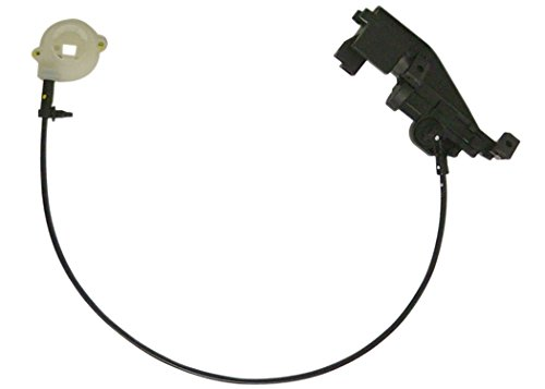 Lid Avenue Trunk Buick Park (ACDelco 16640853 GM Original Equipment Trunk Lid Release Actuator)