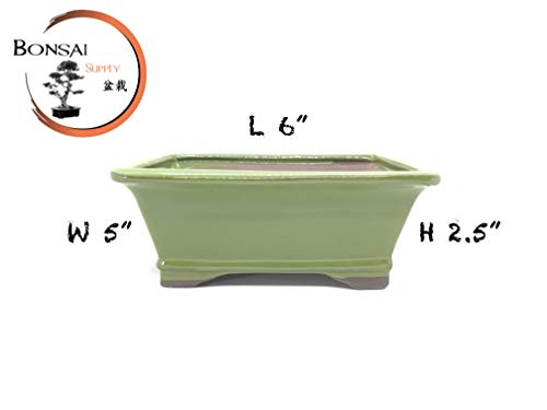 Ceramic Glazed Bonsai Tree Pot 6