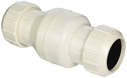 Parts2O FPW212-4 2-Inch Heavy Duty Sewage Check Valve