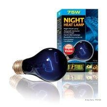 (Exo Terra Night-Glo Moonlight A19 Lamp Watt: 75 W)