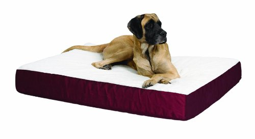 MidWest Quiet Time e'Sensuals Double-Thick Ortho Pet Bed Burgundy 30 Inches by 40 Inches