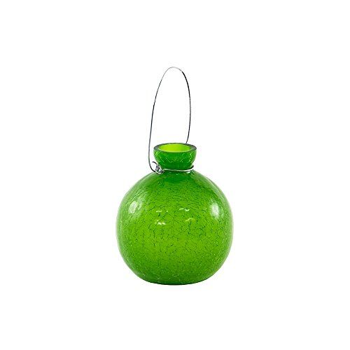 (Achla Designs SV-03FG Hanging Glass Flower Vase, Fern Green)