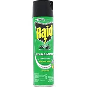 Raid House And Garden Bug Killer Indoor And Outdoor 11 Ounce Can Musical