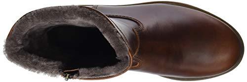 Panama Bottes Bottines Fedro Bark Igloo C24 Jack Marron amp; classiques homme t1qg41xw