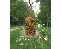 Songbird Essentials SEHHSTAC Seed Cylinder Tray Feeder (Set of 1)