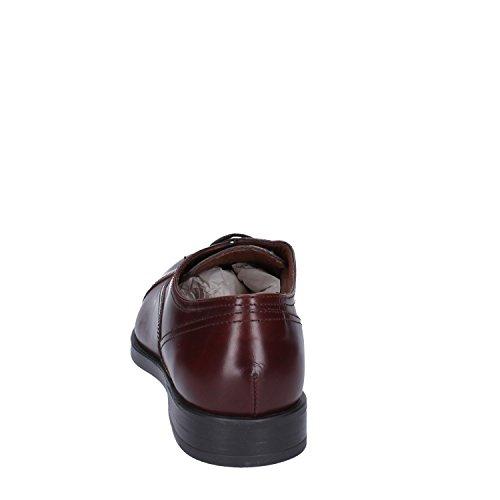 Classiche Pelle Oxford Marrone FLIGHT Uomo Shoe TRIVER fY5BEpnqx
