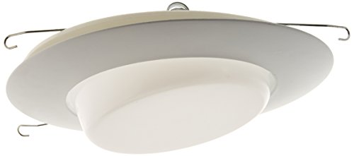 (NICOR Lighting 6-Inch Lexan Shower Trim with Drop Opal Lens, White (17509))