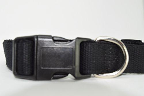 RASTA-DOG-Hemp-Dog-Collar-Available-in-4-Sizes-4-Colors-Watermelon-Blue-Waters-Black-Grey