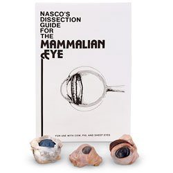 - Nasco Mammalian Eye Comparison Class Set of 30 - Dissection & Science Education Materials - LS03828