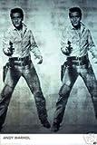 Posters & Paintings- Andy Warhol Elvis