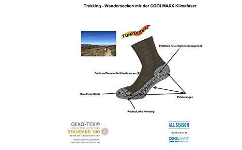 Wandersocken f/ür Damen TippTexx24 Coolmax /Ökotex Trekkingsocken 4 Paar M/ädchen mit zus/ätzlicher Garantie Schadstoffgepr/üft nach Oekotex Standard