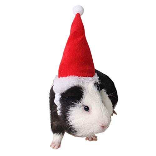 Guinea Pig Holiday and Christmas Hat, Puppy Dog Santa Hat Costume Christmas Collection Pet Accessory for Cat Rabbit Hamster Guinea Pig, Small, Red (Sweater For Guinea Pig)