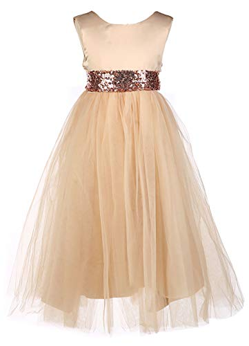 SanLai Flower Girls Evening Dresses Kids Girl Wedding Pageant Party Sequins Dress 3-4 Champagne, Medium ()