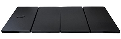 DevLon NorthWest Shiatsu Mat Practitioner Thai Pad Tumbling Gym Mat with Case Black (Thai Massage Shiatsu Mat)