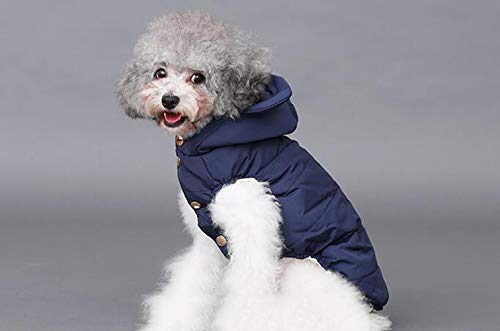 bluee XS bluee XS Pet Clothes Cotton Vest Dog Clothes Puppy pet Fall Winter Clothes pet Clothes Keep Warm feet    (color   bluee, Size   XS)