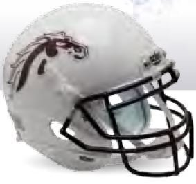 - Schutt NCAA Western Michigan Broncos Replica XP Football Helmet, White/Brown Alt. 1