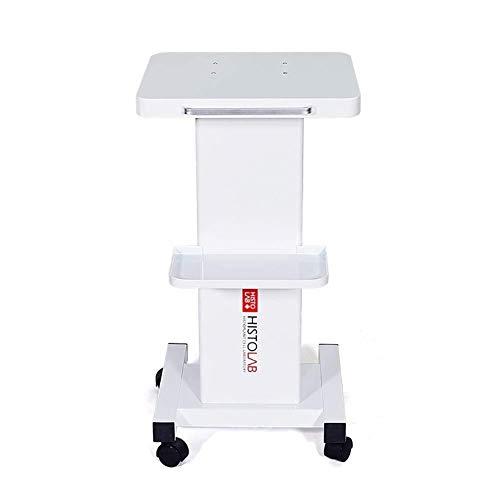 CHUNSHENN Hospital Trolley, Medical Supplies Rack,Medical Cart Tool White Beauty Salon Cart for Spa, Health Club Steel Tool Utility Cart with Storage Tray, Universal Brake Wheel, 50Kg Load 35×35×70Cm from CHUNSHENN