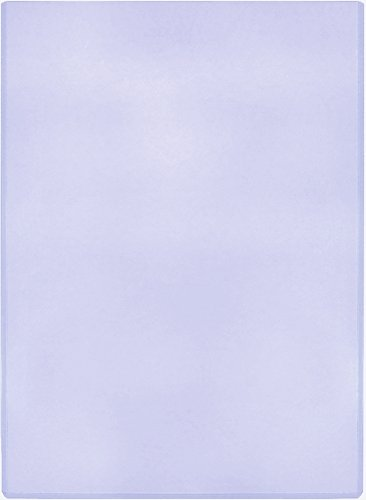 (1) Life Magazine Topload Holders - Rigid Plastic Sleeves - BCW Brand