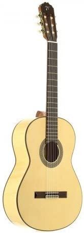 JOSE TORRES JTF-30: Amazon.es: Instrumentos musicales