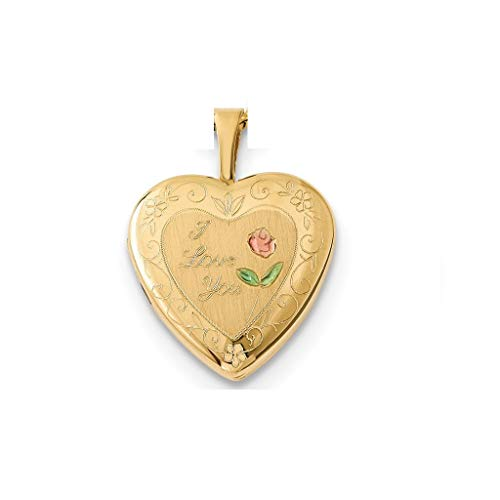 - Pori Jewelers 14K Solid Yellow Gold Heart Locket Pendants- Perfect for Holding Photos, Messages, sentimental's-Multiple Styles Available (I Love You Enamel (20mm))