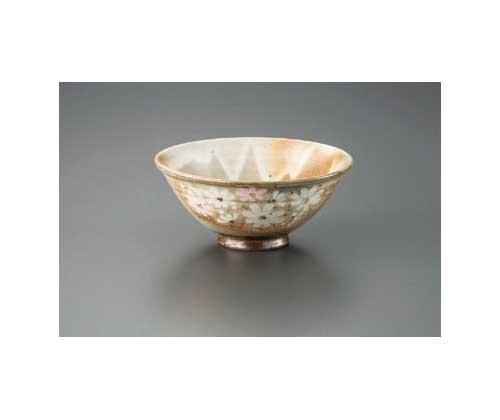 Gohonte Autumn Sakura Made by KIKUYOH 14 cm Match Bowl Pottery Ware by