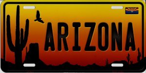 Smart Blonde Arizona Sunset Silhouette Metal License Plate