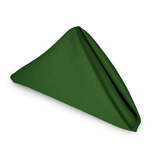 (TableLinensforLess Hemmed Edge, Restaurant Size 20 Inch Square Spun-Polyester Dinner Napkins (12, Forest))