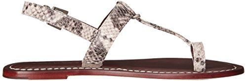 Bernardo Femmes Maverick Robe Serpent Sandale Taupe
