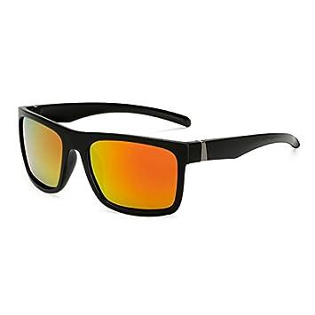 TL-Sunglasses Polaroid Gafas de Sol Unisex Piazza Depoca ...