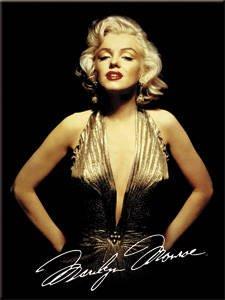 Marilyn Monroe (gold dress) steel fridge magnet (na) (Gold Fridge compare prices)