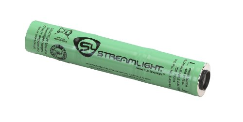 Streamlight 75811 Stinger DS C4 LED Flashlight with AC Steady Charger, Black
