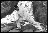 Six Harmony Ten Animals Hsing I Chuan (Part 1 of 2)