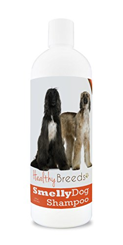 Healthy Breeds Smelly Dog Deodorizing Shampoo & Conditioner with Baking Soda for Afghan Hound - OVER 200 BREEDS - 8 oz - Hypoallergenic for Sensitive -