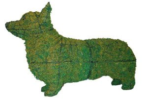 Corgie Topiary Mossed Dog in Wire Frame - Add Live or Artificial Plants for a Centerpiece Works of Art