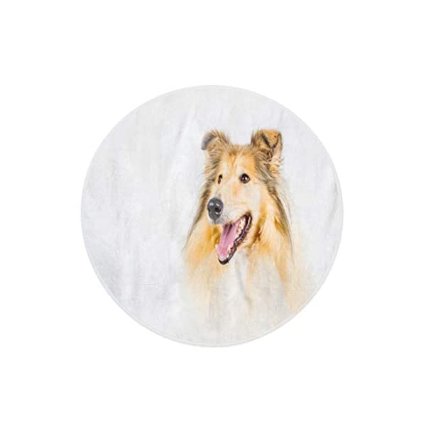 Semtomn 60 Inches Round Beach Towel Blanket Brown Animal Collie Rough on Breed Brightly Canine Dog Travel Circle Circular Towels Mat Tapestry Beach Throw 2