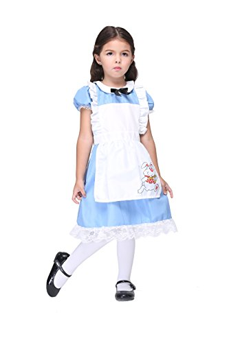 Vivihoo EK027 Lil Alice in Wonderland Toddler's Costume Cosplay Dress For Little Girl (XL) (Alice In Wonderland Childrens Costumes)