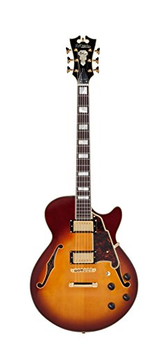 D'Angelico Deluxe Kurt Rosenwinkel SS Semi-Hollow Electric Guitar - Honey Burst ()