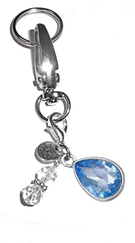 Birthstone Charm Key Chain Ring, Women's Purse or Necklace Charm, Comes in a Gift Box! (March)