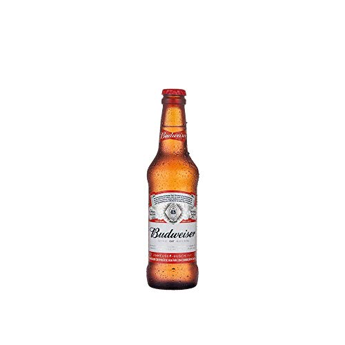 Cerveja Budweiser 330ml Pack Unidades