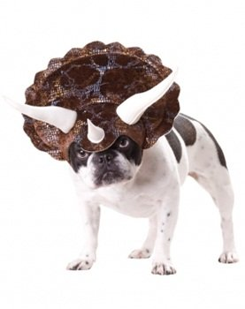 Animal Planet Triceratops Dog Costume Size Large, My Pet Supplies