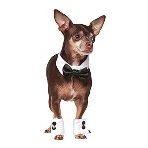 Rubie's Bowtie and Cuff Set Pet Accessories, Medium/Large 17