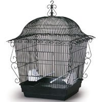 Cage Scrollwork (#220 Scrollwork Tiel Cage Black 20 X 20 X 24)